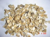 Dried Gray Pleurotus Ostreatus mushrooms grade A