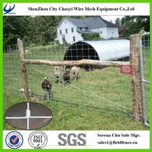China Manufacturer High Tensile Galvanized Rabbit Guard Fencing