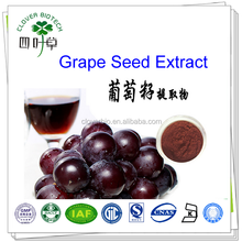 80% 98% Proanthocyanidin hot sale natural grape seed extract powder