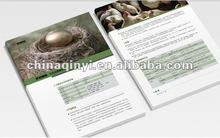2012 new high quality products catalogue printing
