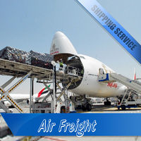 China trustworthy air freight express courier service from shenzhen shanghai hongkong to Grenoble destination