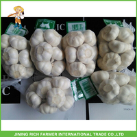 Low Price China Wholesale Garlic Supplier
