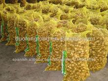 2013 specification fresh ginger