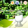 Proveedor de café verde de frijol extraer el ácido clorogénico hasta 60%