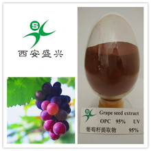pure plant extraction Grape Seed Extract with high quality