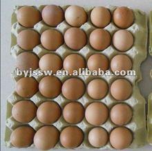 stackable egg tray design