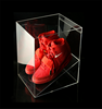high transparent square new attractive acrylic sneaker box