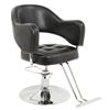 Hot Sale Good Quanlity Salon Styling Chair
