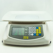 New Digital prcing scale
