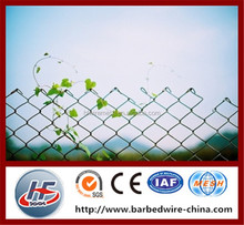 Professional manufacturer 50*50mm PVC coated diamond chain link fencing,PVC coated chain link wire fencing and gate,diamond mesh