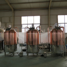 CG-500L red copper brewhouse system mini craft beer brewing system