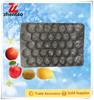 Polypropylene PP Many Sizes Nested Plastic Fruit Trays Blue Fruit Tray For Pear/Fresh Fruit Export Packaging