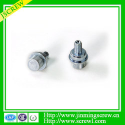 Salt spray testing 48H Good factory Best quality Special head screw