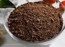 semillas de la camelia comida con paja