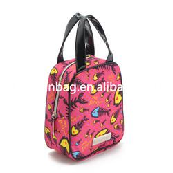 2015 picnic bag ,breast milk storage bag, lunch bag