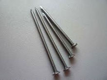 Galvanized concrete steel nails (FACTORY)