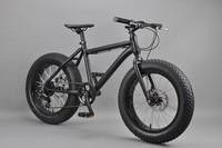 20 inch Fat bike china dirt bikes