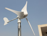 300W home use windmill wind power with wind solar hybrid controller hot sales