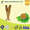 alibaba china supplier Angelica extract/dong quai extract medicine for blood circulation & improving sleep quality