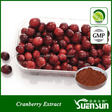 high quality new products cranberry anthocyanin extract