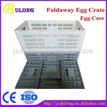 Durable and strong portalbe egg carton packaging egg/plastic egg crate