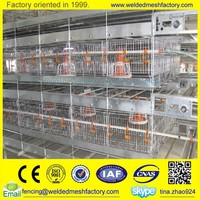 High quality poultry layer cages for chicken,quail animals