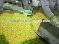 Grade A Frozen Organic Sweet Corn Cob