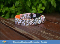 pet accessories wholesale china nylon webbing for dog collars