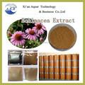 Precio razonable fabricante de la fuente natural de la hierba equinácea p. E 60% y libre de la muestra