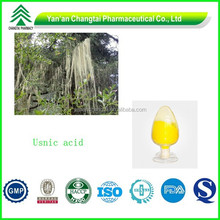 BV certificated On sale now Usnic acid powder