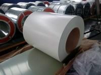 Prepainted Galvanized Steel Sheet Manufacturer to Korea Market