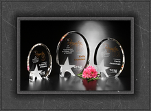 2015 Custom k9 new design crystal trophy award plaques