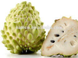 graviola extract powder/graviola fruit extract/guanabana extract