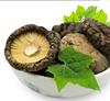 dried edible Shiitake mushroom/dried mushrooms