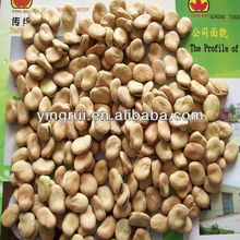 2013 crop dry broad bean good quality