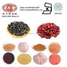 Organic Black Goji Berry Extract Powder Manufacturer / Goji Berry Extract Anthocyanin Red Pigment / Goji berry Powder