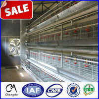 Characteristic A Type Chicken Layer Cage for Chicken Farm