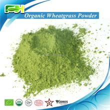 Polvo Wheatgrass ( 100 gramps de muestras de libre de carga )