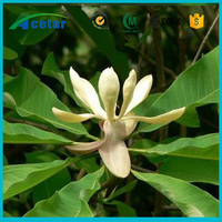Best selling products benefit of black cohosh powder extract herb