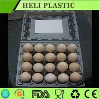 Clear transparent 30 Holes plastic PVC quail egg cartons wholesale