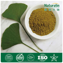 Natural Ginkgo Biloba leaf 24%-6%