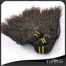 Specialized Human Virgin Hair Quality Brazilian Kinky Curly Hair Extension for Black Women