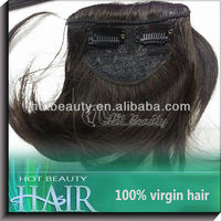 100 Human Hair Extension Bang