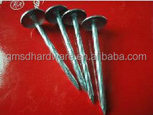 Hot sale umbrella head roofing nails (Factory)