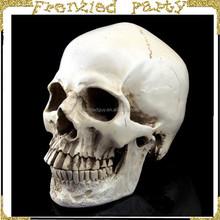 wholesale halloween plastic white skull FGHS-0002