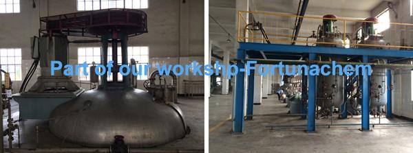 Part of our workshop_Fortunachem.jpg