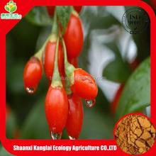 Best Selling Item Natural Organic Goji Extract Powder/Promotion Price of Goji Powder