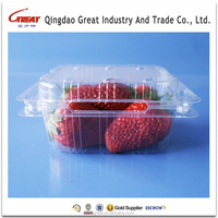 Ventilated Holes PET Plastic Fruit Clamshell Packing