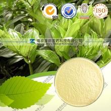 High quality Natural Polygonatum odoratum Extract-- Polygonatum odoratum Druce P.E