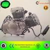 GT250 engine 2 cylinder V-cylinder Yinxiang 250cc engine
